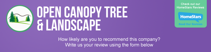 Write A Review - Tree Removal | Snow Removal | Open Canopy